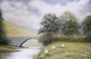 land-sheeps
