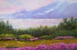 landscape-pinkmtn